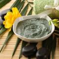 БМК на основе голубой кембрийской глины и растительных экстрактов
